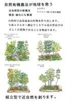 組み合わせ型で近自然と共に自然は妙薬成りを創りだします