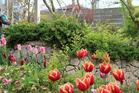 春爛漫家庭をサポートする木々草花が輝き始...