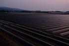 2020・4・15日18時20分夕暮れサツマイモの植え付け前の畑