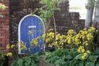 平成7年から時期が来ると必ず黄色い花を咲かせるつわぶき